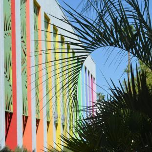 PalmSprings outdoors (3)