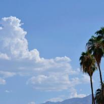 PalmSprings outdoors (6)