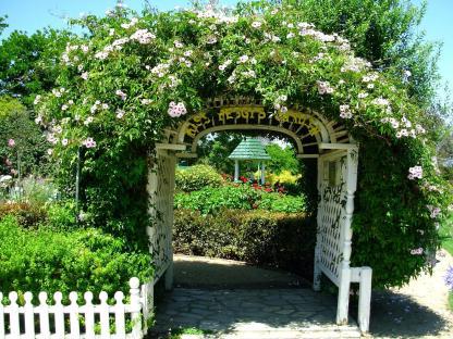South Coast Botanic (12.5)