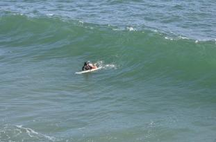 Surf's Up, Dude (4)