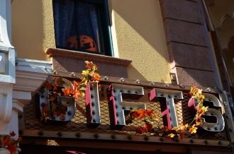 Fall Disneyland (12)