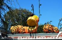 Fall Disneyland (3)