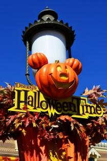 Fall Disneyland (6)