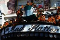 Fall Disneyland (9)