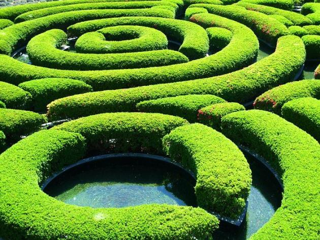 Getty maze closeup