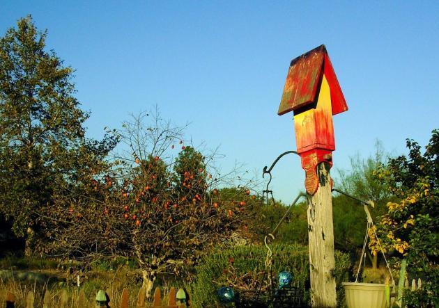 Birdhouse in the garden