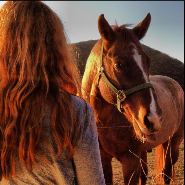 Kat and horse