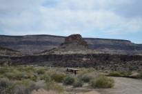 Mojave National Preserve 007