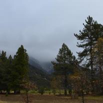 Oak Glen on a rainy day (9)