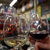 Orfila Winery 3