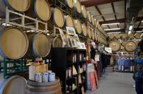 Orfila Winery 4