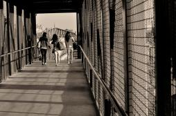 Street Photography in So Cal (6)