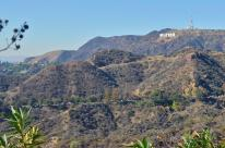 The ever-famous Hollywood sign. Notice the line of cars inching along the road from Fern Dell