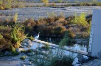 Biking Santa Ana River Trail (3)