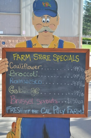 Farm Store 049