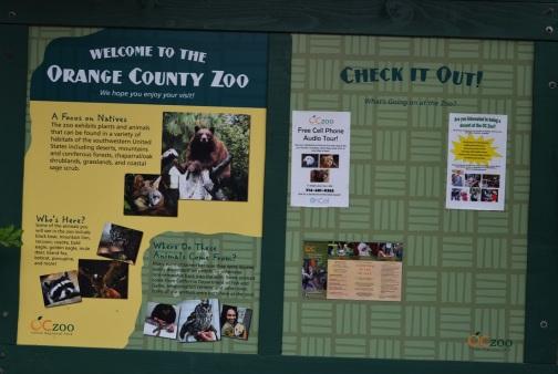 Hidden Zoo (12)