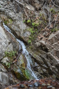 Hiking Holy Jim Trail (10)