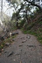 Hiking Holy Jim Trail (6)