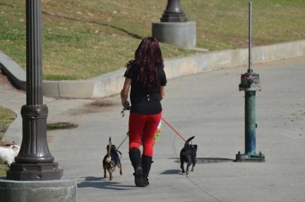 MacArthur Park pics with Jeanne 023