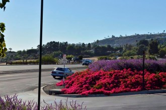 Flowers at the driveway from Pacific Coast Highway