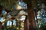 The Glass Church (9)