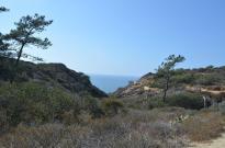 Beachside Photography Class (2)