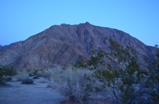 Cam's Bday in Anza Borrego 008