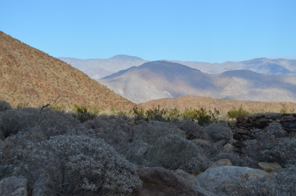 Cam's Bday in Anza Borrego 178