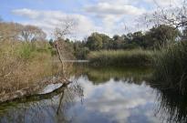 El Dorado Nature Center (1)