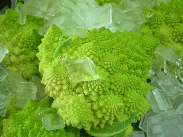 Veggie Art