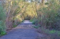 San Joaquin Wildlife Sanctuary (3)