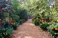 Spring at Descanso Gardens (4)
