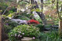 Spring at Descanso Gardens (8)