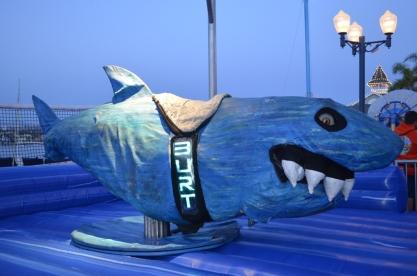 Ride the shark?!