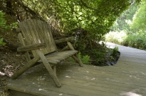Springtime at Oak Glen (12)