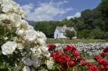 Springtime at Oak Glen, part 3 (12)