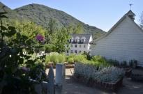 Springtime at Oak Glen, part 3 (5)
