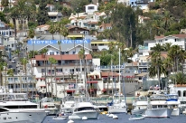 26 Miles to Catalina (6)