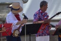 A banjo-uke ( banjo / ukelele)