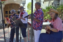 Ukelele and guitar group