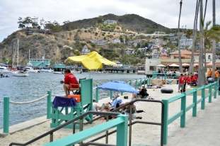 Catalina Sightseeing (11)