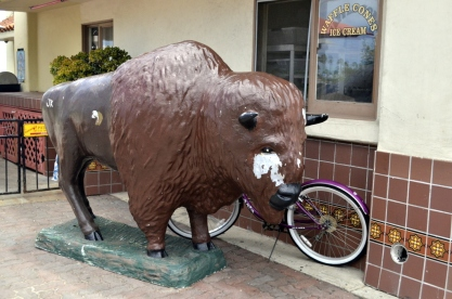 Island bison