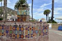 Catalina Sightseeing (4)