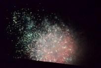 Otherworldly Fireworks (10)