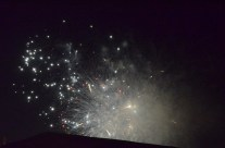 Otherworldly Fireworks (11)