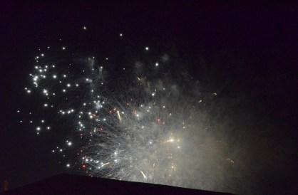 Otherworldly Fireworks (11)