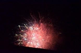 Otherworldly Fireworks (4)