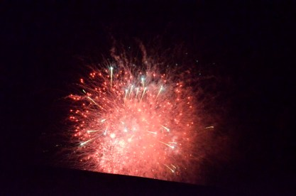 Otherworldly Fireworks (5)
