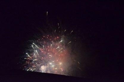 Otherworldly Fireworks (6)