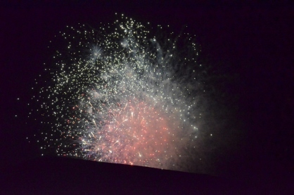 Otherworldly Fireworks (8)